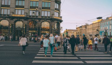 Things to do in St Petersburg | What to visit and see in St Petersburg